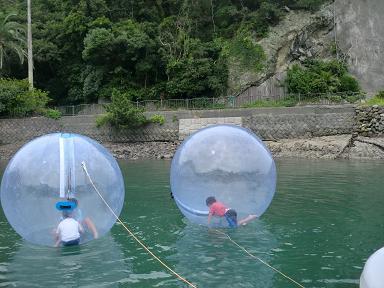 下田海中水族館のアトラクション