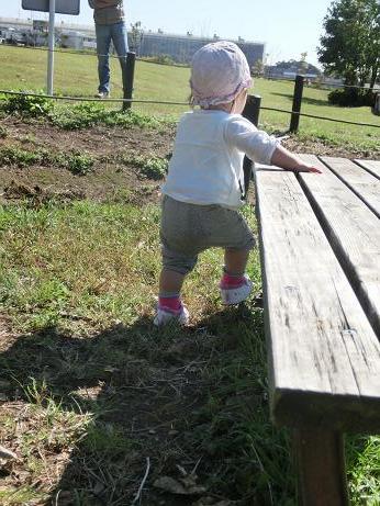 息子ざりがに捕りの間、ベンチを回る娘